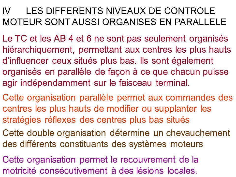 IV LES DIFFERENTS NIVEAUX DE CONTROLE MOTEUR SONT AUSSI ORGANISES EN PARALLELE