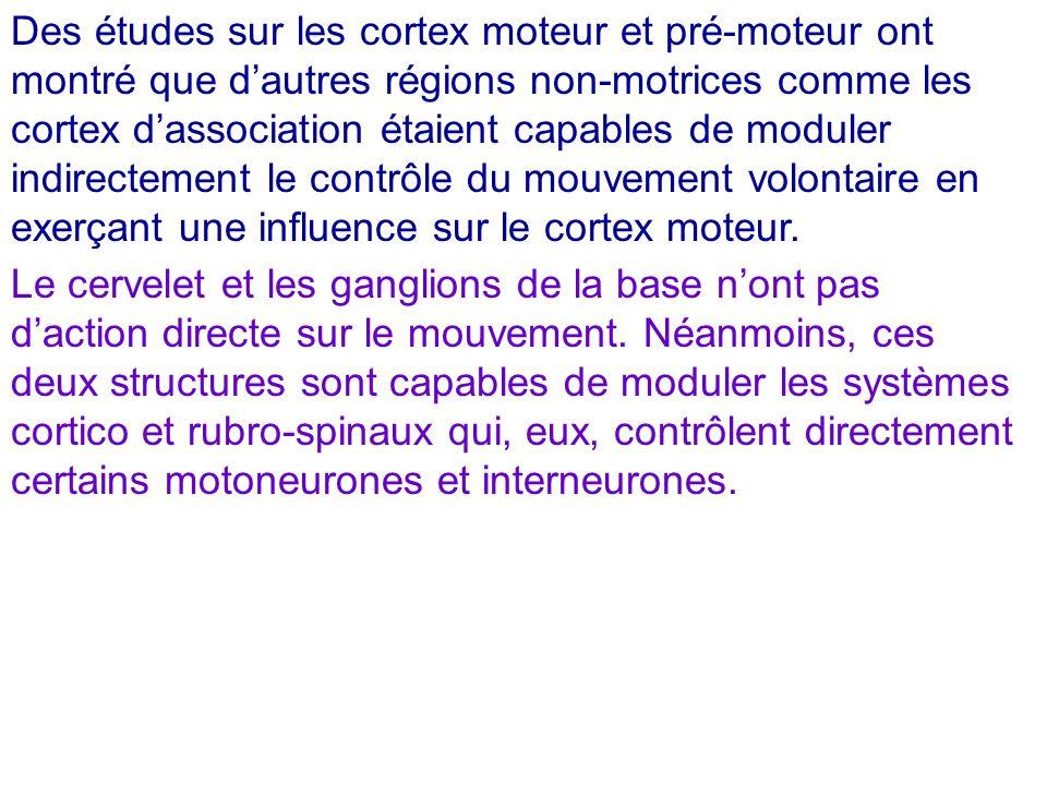 Des études sur les cortex moteur et pré-moteur ont montré que d'autres régions non-motrices comme les cortex d'association étaient capables de moduler indirectement le contrôle du mouvement volontaire en exerçant une influence sur le cortex moteur.