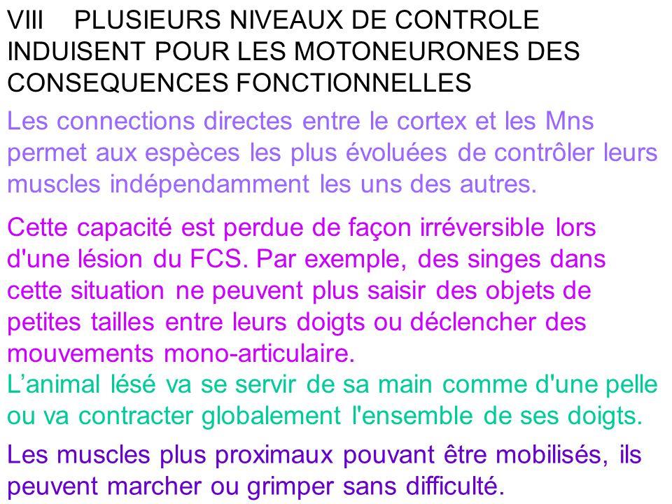 VIII PLUSIEURS NIVEAUX DE CONTROLE INDUISENT POUR LES MOTONEURONES DES CONSEQUENCES FONCTIONNELLES