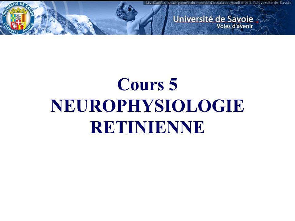 NEUROPHYSIOLOGIE RETINIENNE