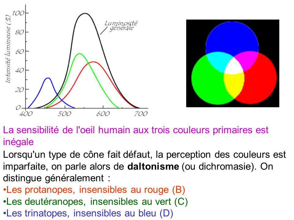 La sensibilité de l oeil humain aux trois couleurs primaires est inégale