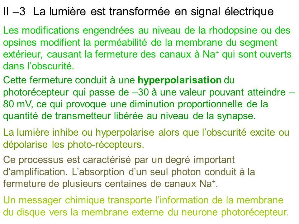 II –3 La lumière est transformée en signal électrique