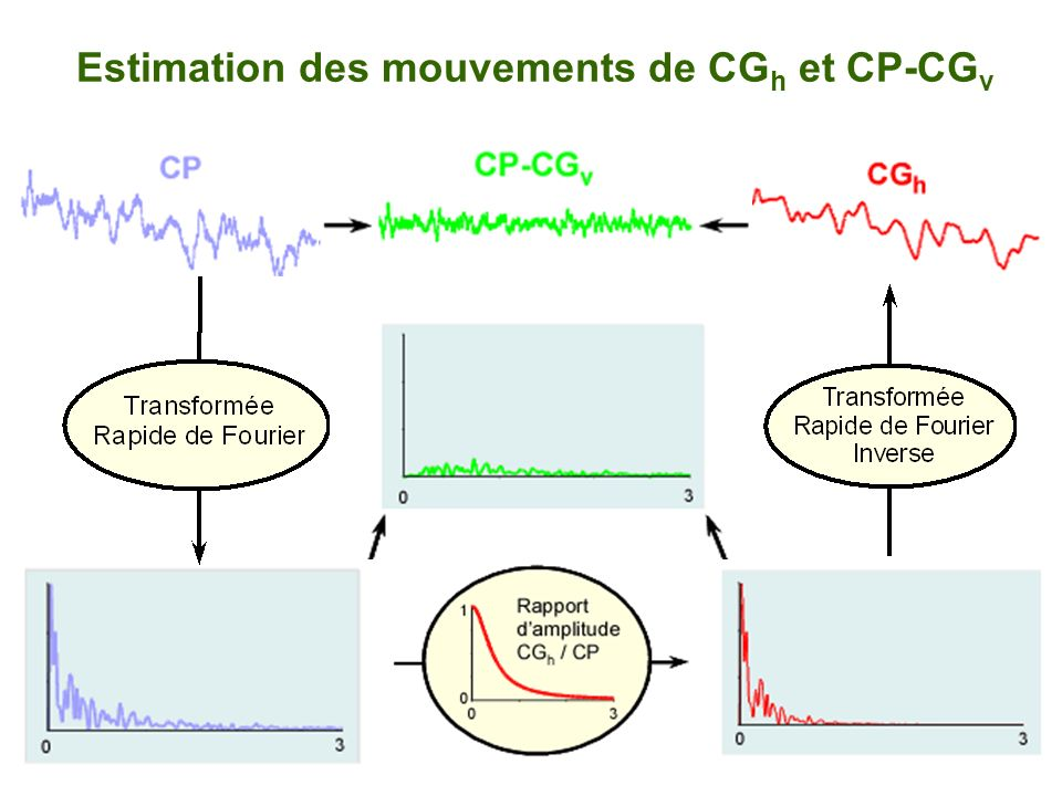 Estimation des mouvements de CGh et CP-CGv