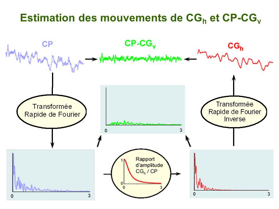 Estimation des mouvements de CGh et CP-CGv