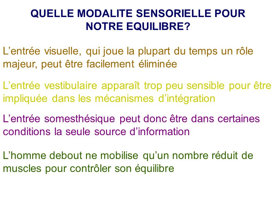 QUELLE MODALITE SENSORIELLE POUR NOTRE EQUILIBRE