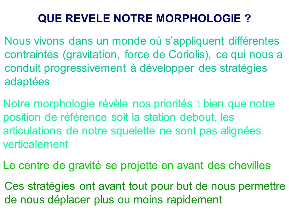QUE REVELE NOTRE MORPHOLOGIE