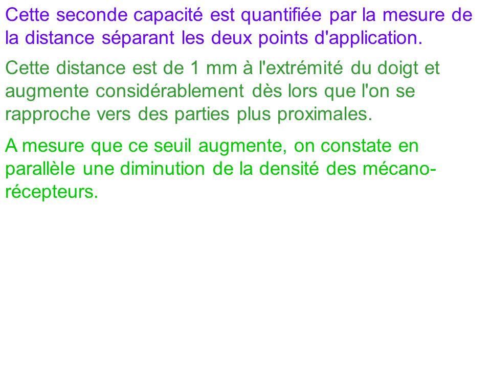 Cette seconde capacité est quantifiée par la mesure de la distance séparant les deux points d application.