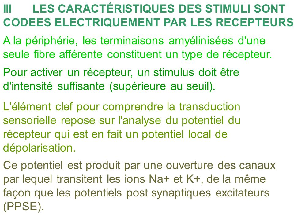 III LES CARACTÉRISTIQUES DES STIMULI SONT CODEES ELECTRIQUEMENT PAR LES RECEPTEURS