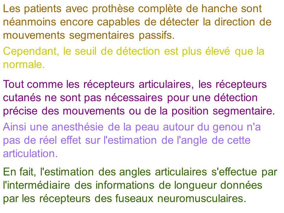 Les patients avec prothèse complète de hanche sont néanmoins encore capables de détecter la direction de mouvements segmentaires passifs.