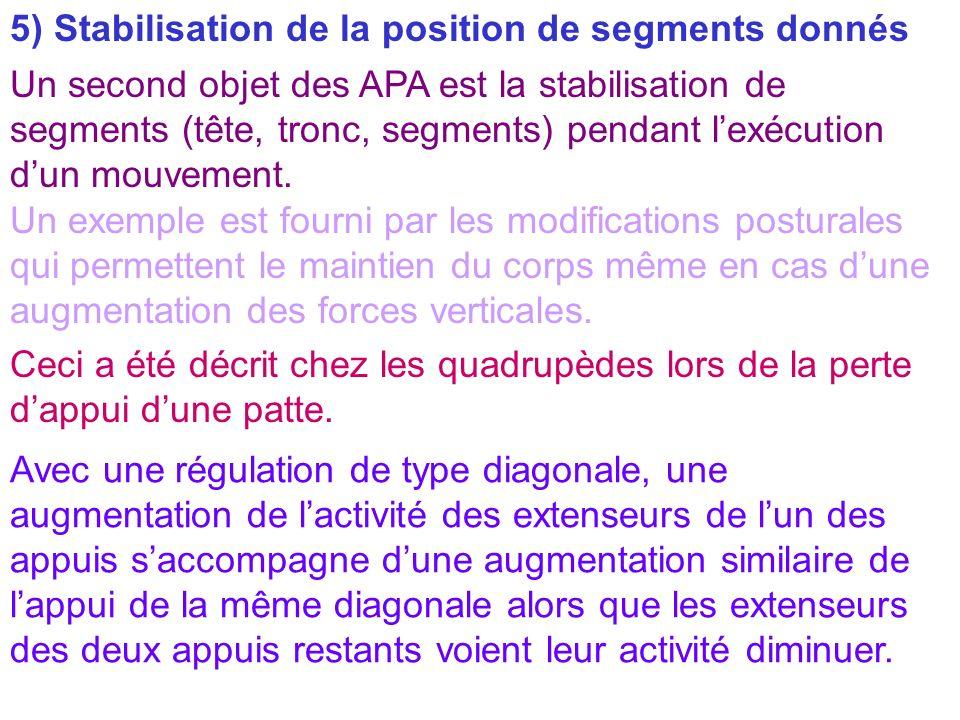 5) Stabilisation de la position de segments donnés