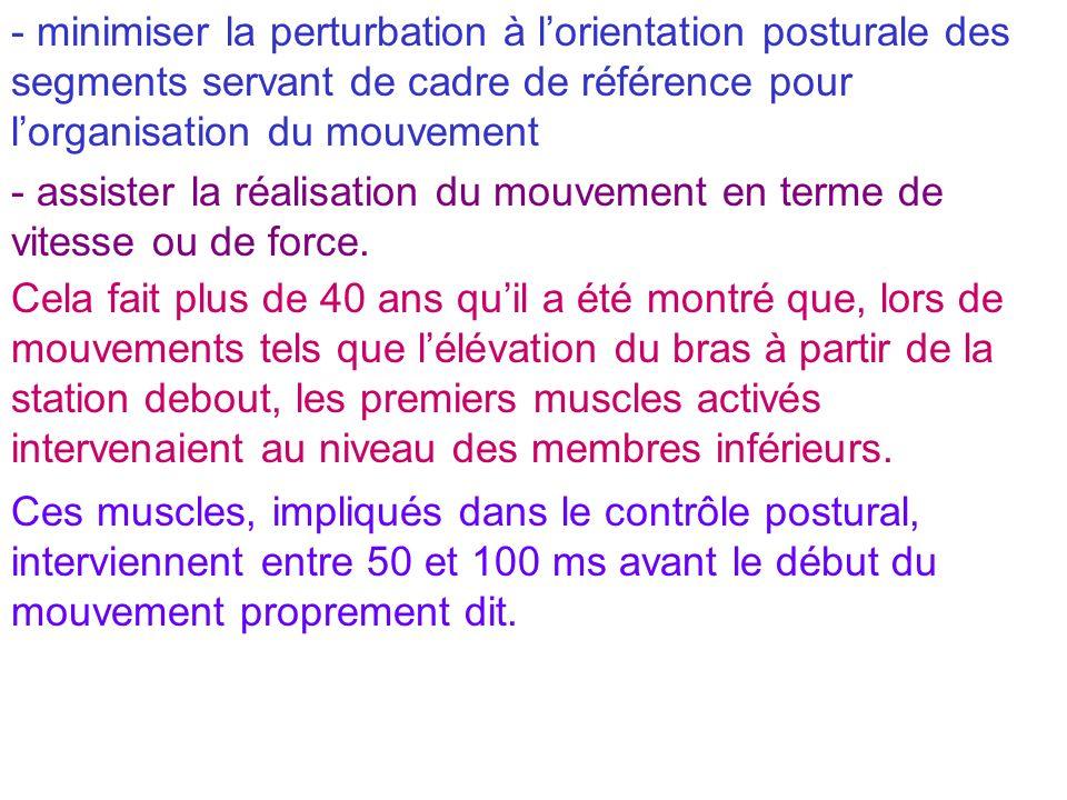 - minimiser la perturbation à l'orientation posturale des segments servant de cadre de référence pour l'organisation du mouvement