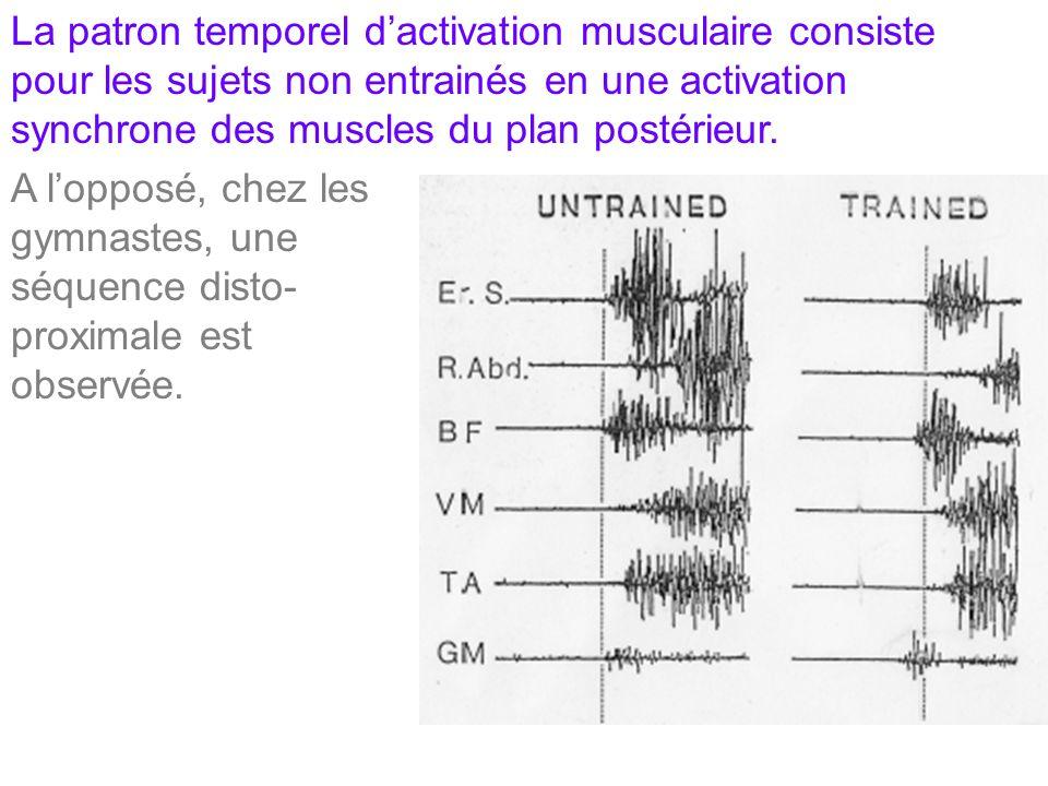 La patron temporel d'activation musculaire consiste pour les sujets non entrainés en une activation synchrone des muscles du plan postérieur.