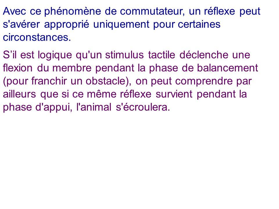 Avec ce phénomène de commutateur, un réflexe peut s avérer approprié uniquement pour certaines circonstances.
