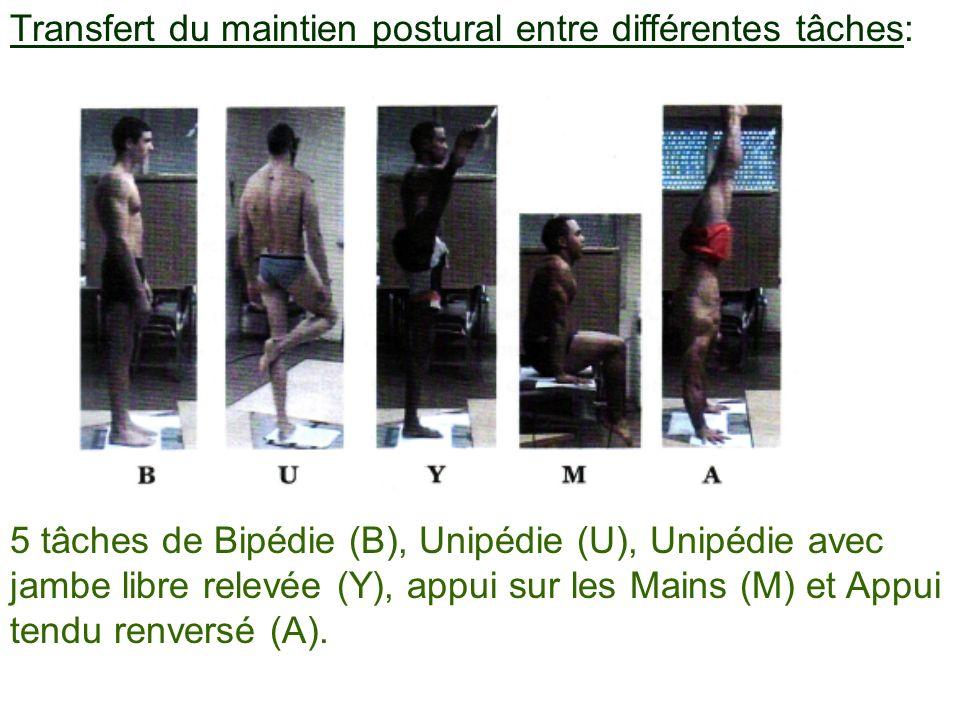 Transfert du maintien postural entre différentes tâches: