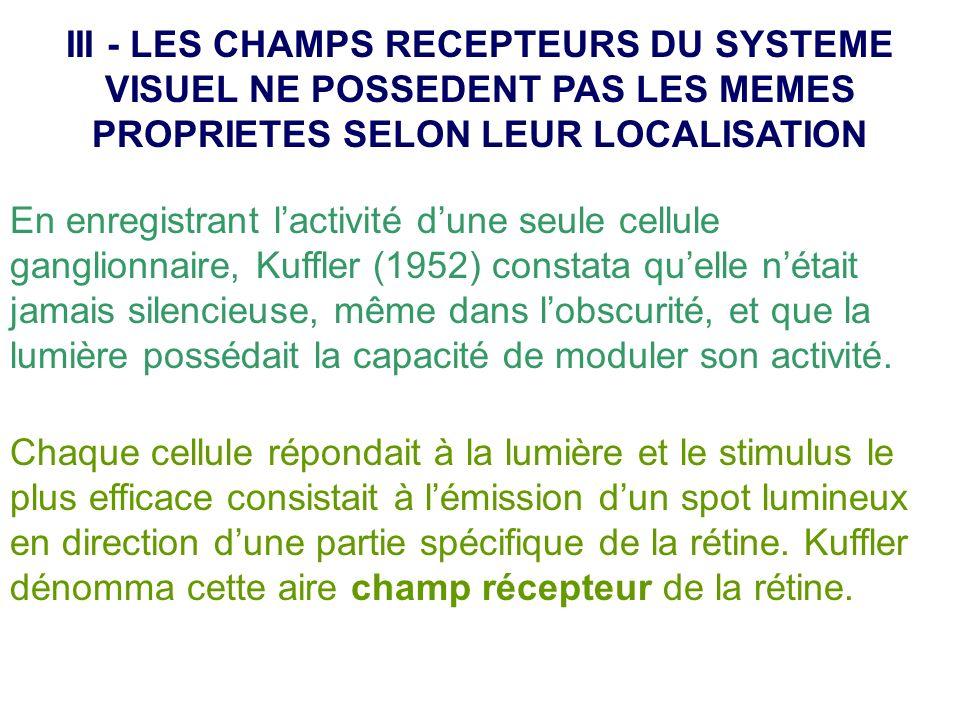III - LES CHAMPS RECEPTEURS DU SYSTEME VISUEL NE POSSEDENT PAS LES MEMES PROPRIETES SELON LEUR LOCALISATION