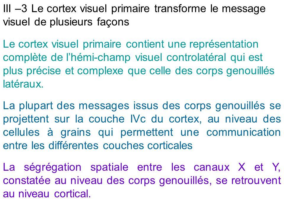 III –3 Le cortex visuel primaire transforme le message visuel de plusieurs façons
