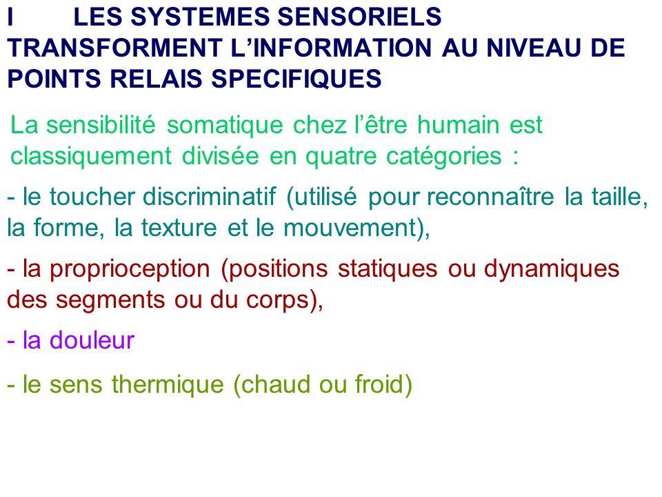 I LES SYSTEMES SENSORIELS TRANSFORMENT L'INFORMATION AU NIVEAU DE POINTS RELAIS SPECIFIQUES