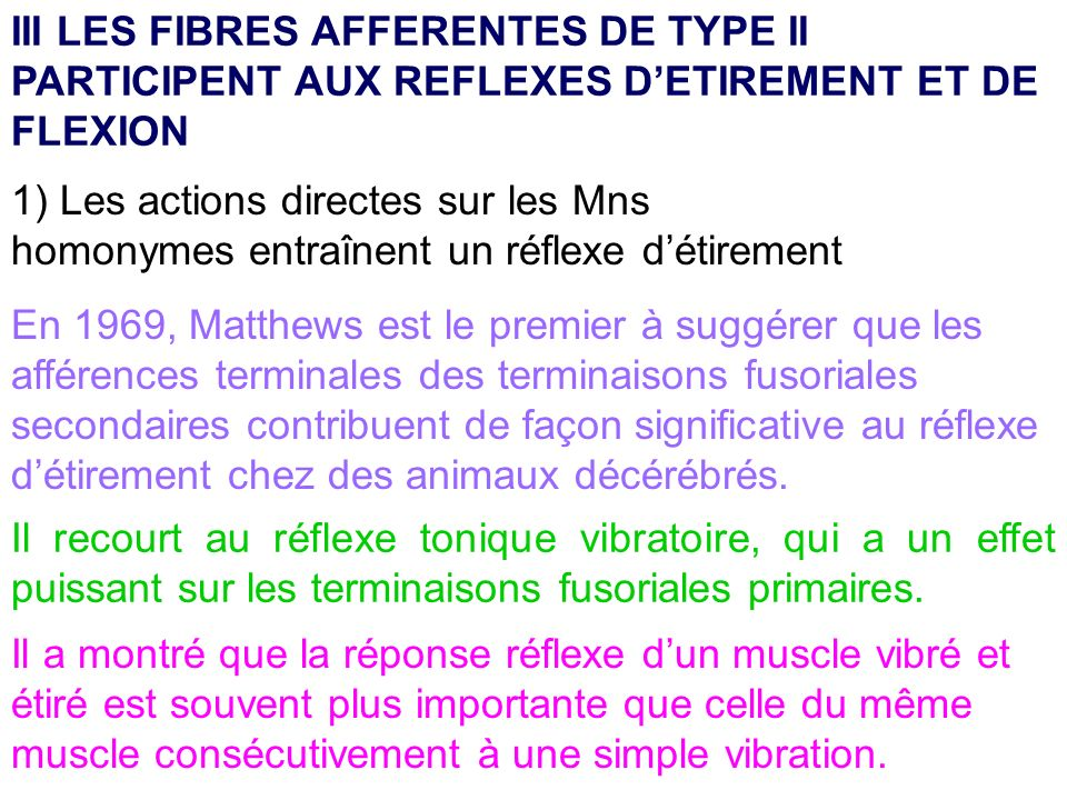 III LES FIBRES AFFERENTES DE TYPE II PARTICIPENT AUX REFLEXES D'ETIREMENT ET DE FLEXION