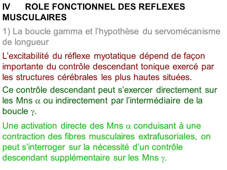 IV ROLE FONCTIONNEL DES REFLEXES MUSCULAIRES