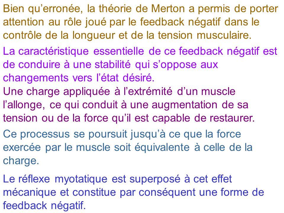 Bien qu'erronée, la théorie de Merton a permis de porter attention au rôle joué par le feedback négatif dans le contrôle de la longueur et de la tension musculaire.