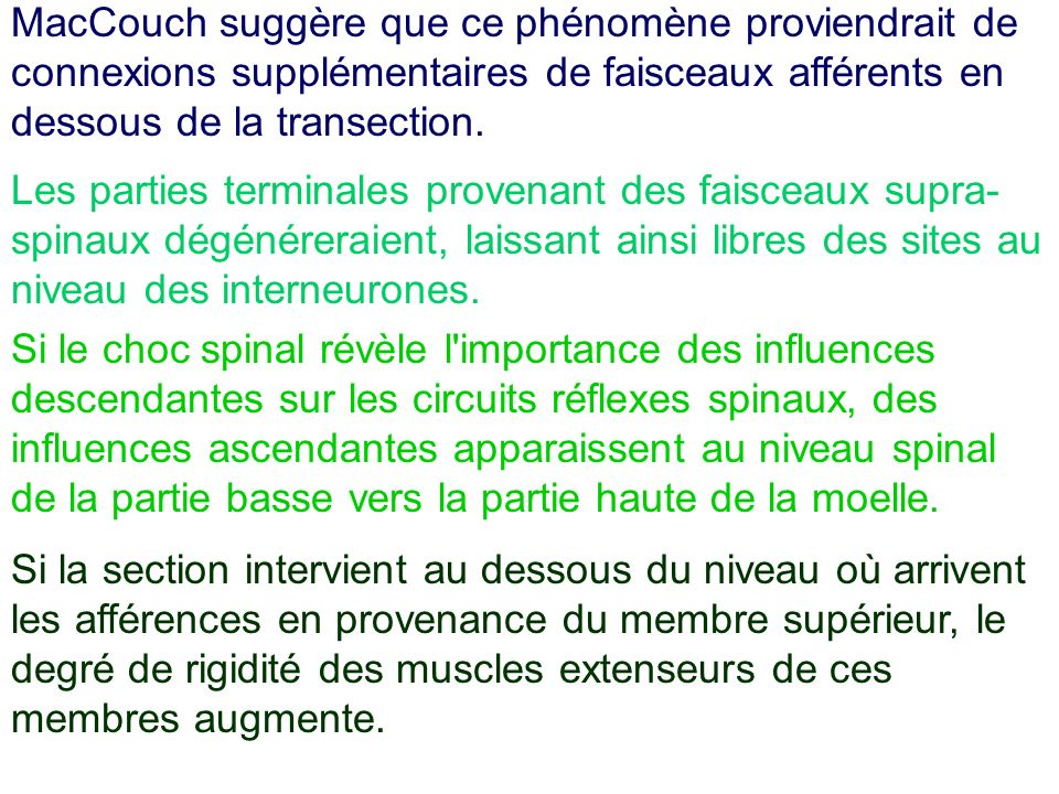 MacCouch suggère que ce phénomène proviendrait de connexions supplémentaires de faisceaux afférents en dessous de la transection.