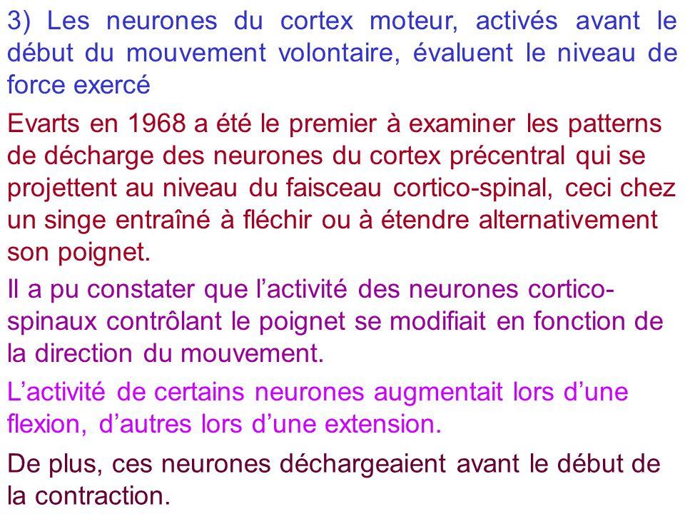 3) Les neurones du cortex moteur, activés avant le début du mouvement volontaire, évaluent le niveau de force exercé