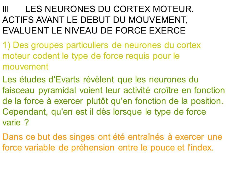 III LES NEURONES DU CORTEX MOTEUR, ACTIFS AVANT LE DEBUT DU MOUVEMENT, EVALUENT LE NIVEAU DE FORCE EXERCE