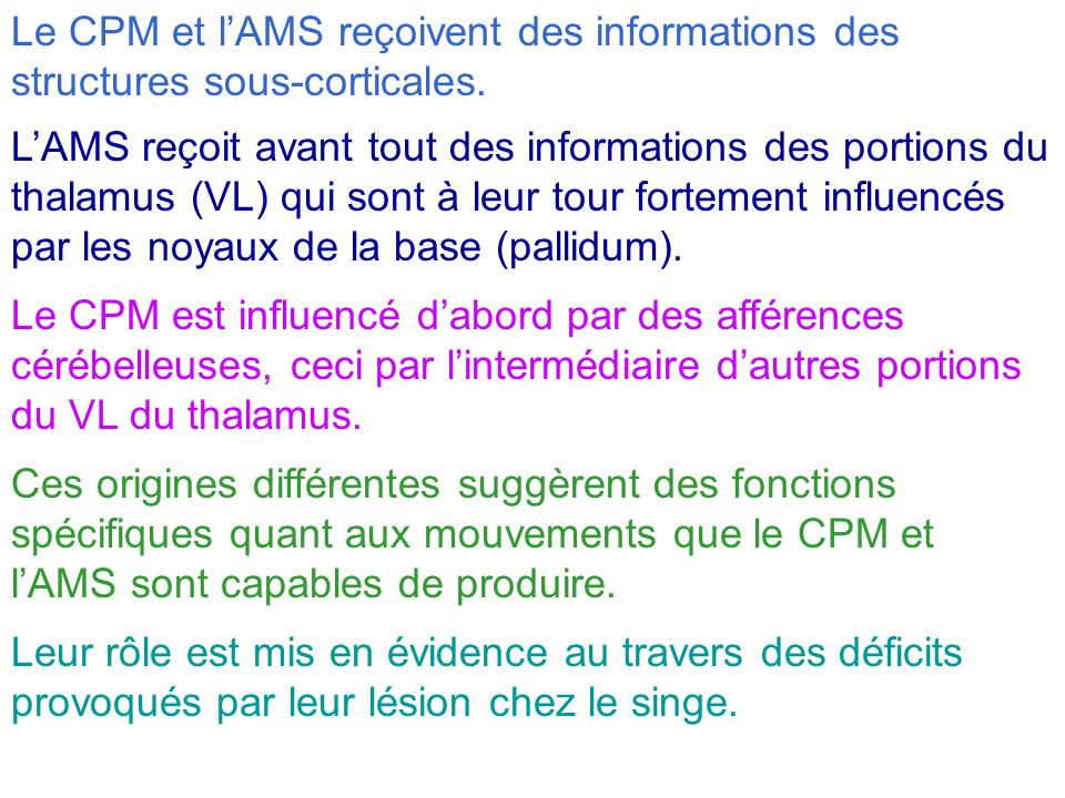 Le CPM et l'AMS reçoivent des informations des structures sous-corticales.