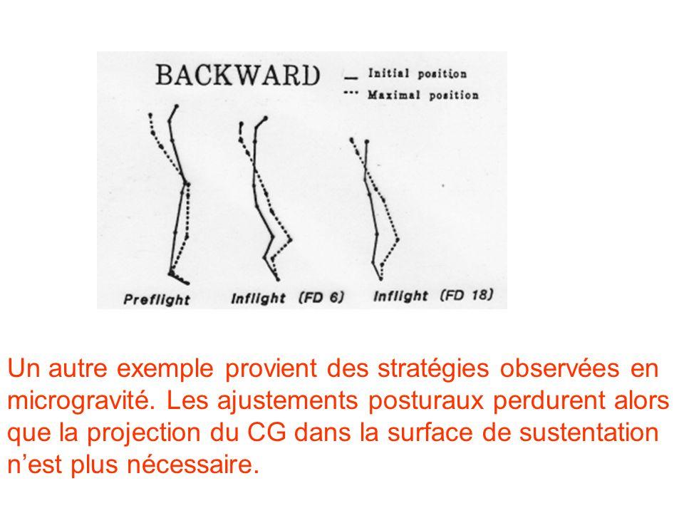 Un autre exemple provient des stratégies observées en microgravité