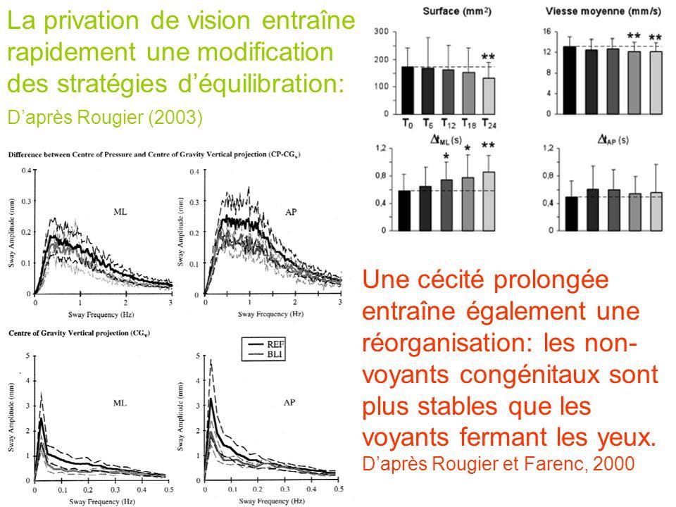 La privation de vision entraîne rapidement une modification des stratégies d'équilibration: D'après Rougier (2003)