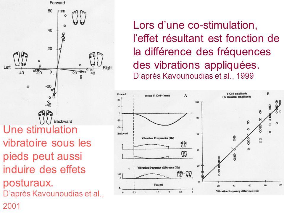 Lors d'une co-stimulation, l'effet résultant est fonction de la différence des fréquences des vibrations appliquées.