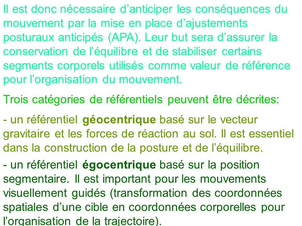 Il est donc nécessaire d'anticiper les conséquences du mouvement par la mise en place d'ajustements posturaux anticipés (APA). Leur but sera d'assurer la conservation de l'équilibre et de stabiliser certains segments corporels utilisés comme valeur de référence pour l'organisation du mouvement.