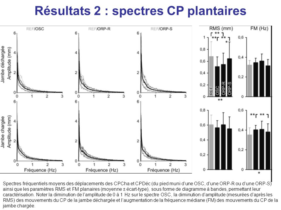 Résultats 2 : spectres CP plantaires