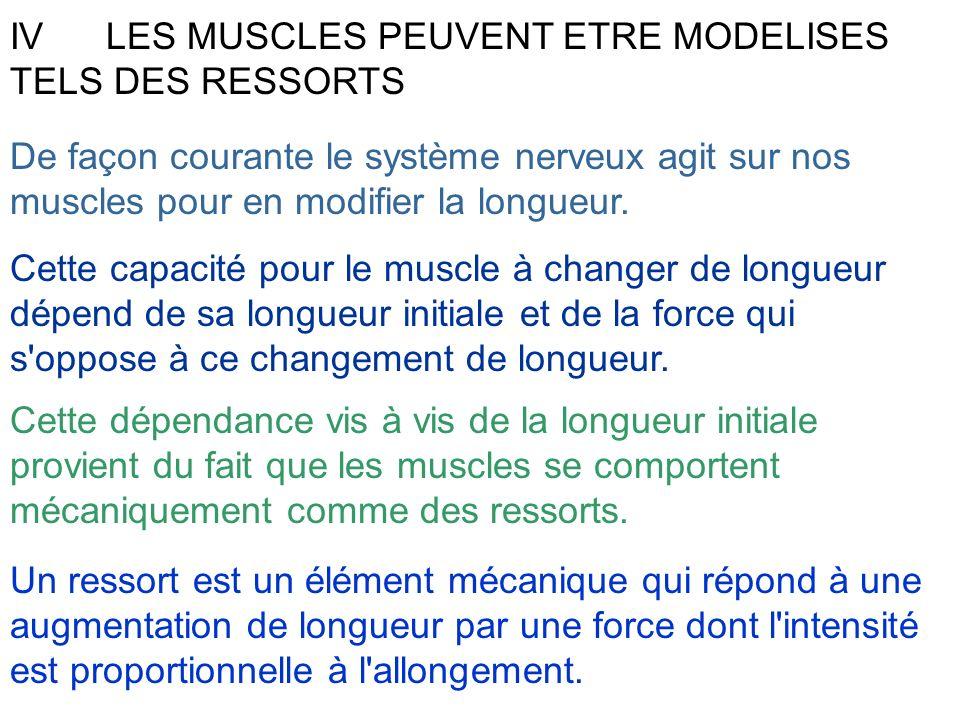 IV LES MUSCLES PEUVENT ETRE MODELISES TELS DES RESSORTS