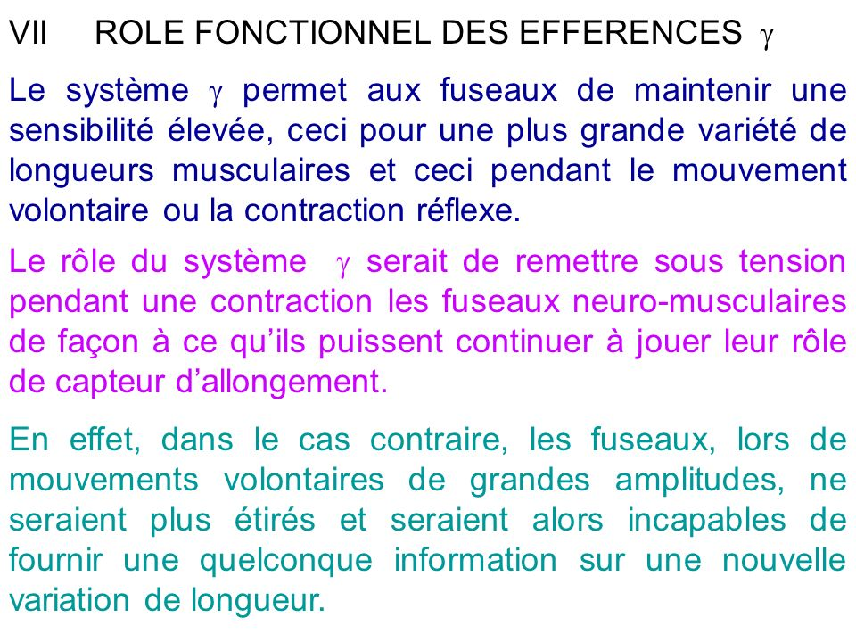 VII ROLE FONCTIONNEL DES EFFERENCES 