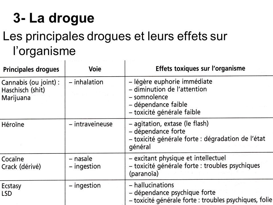 3- La drogue Les principales drogues et leurs effets sur l'organisme