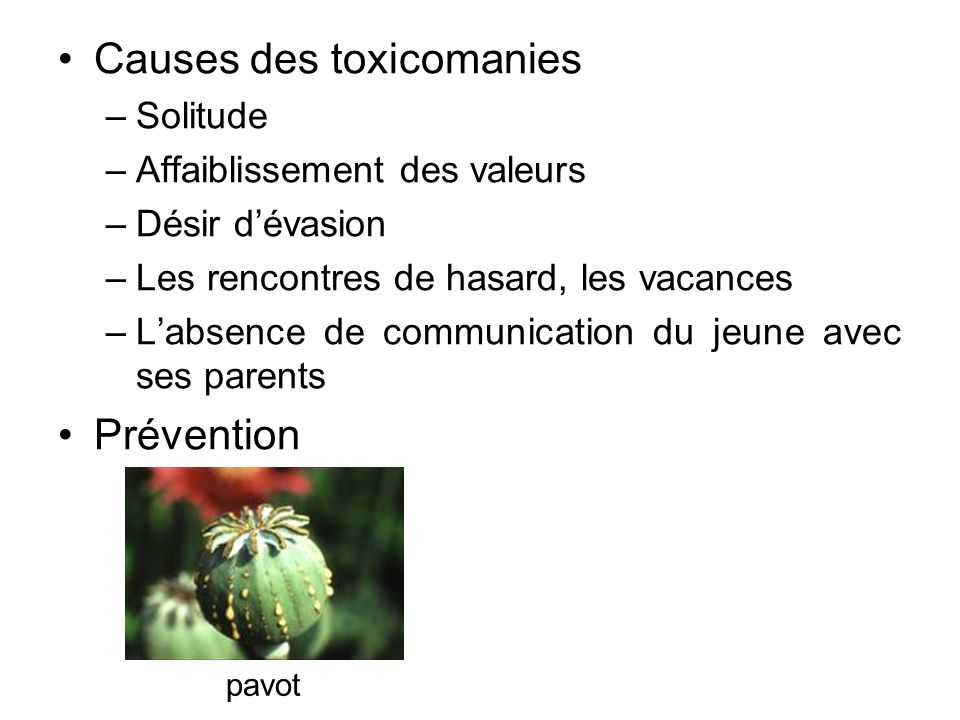 Causes des toxicomanies