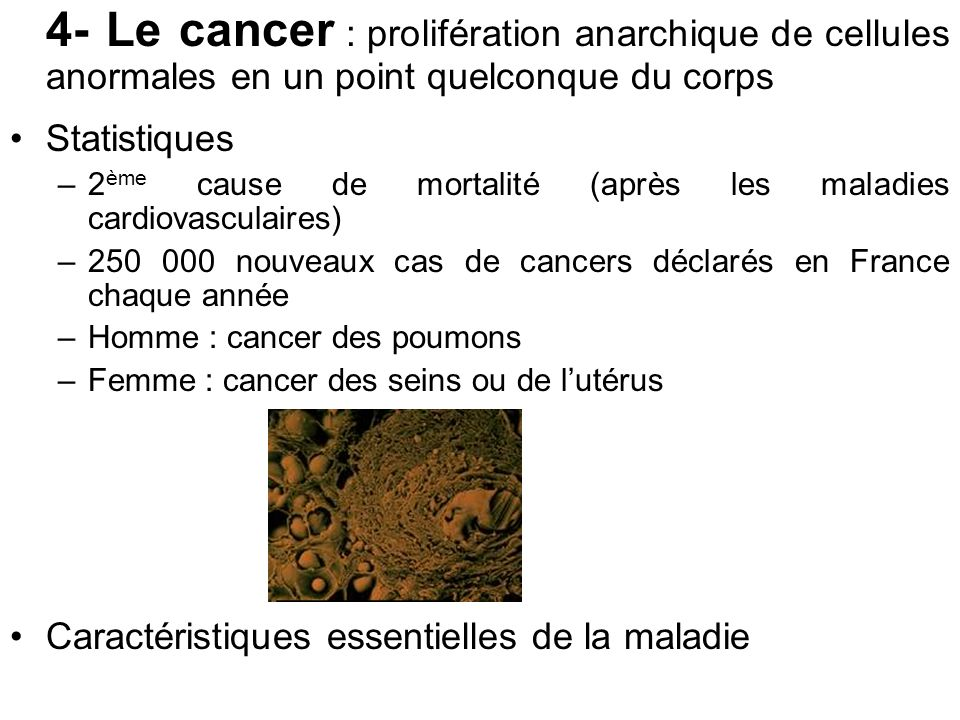 4- Le cancer : prolifération anarchique de cellules anormales en un point quelconque du corps