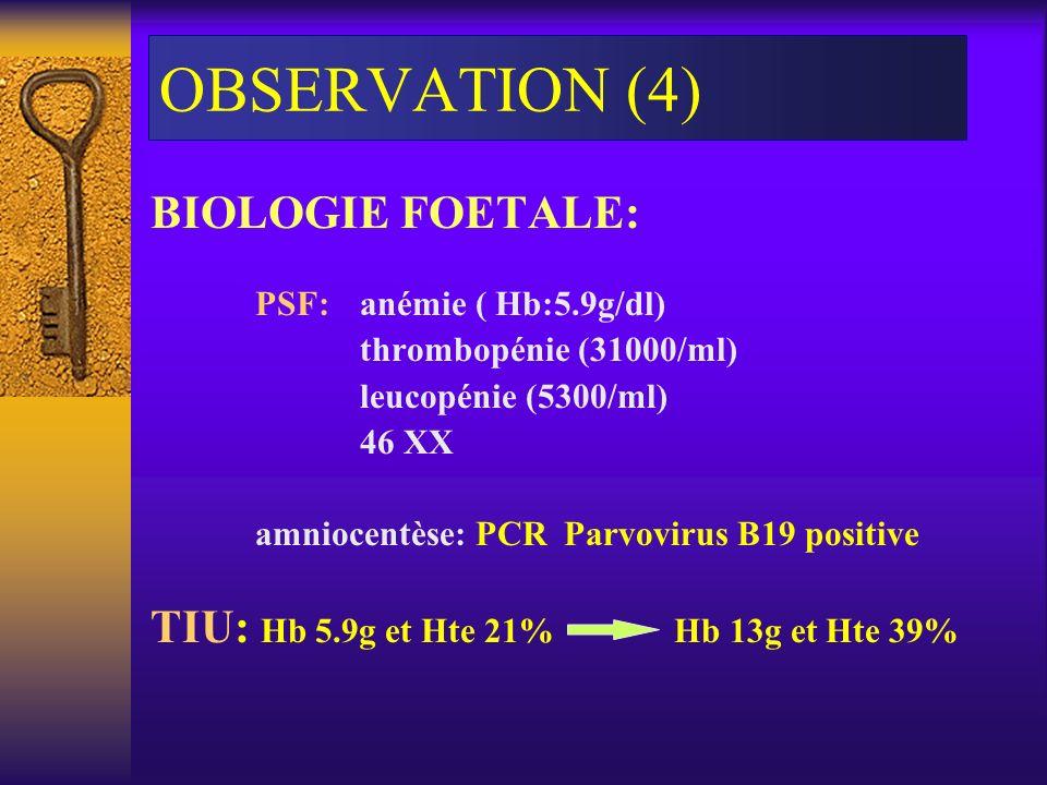 OBSERVATION (4) BIOLOGIE FOETALE: