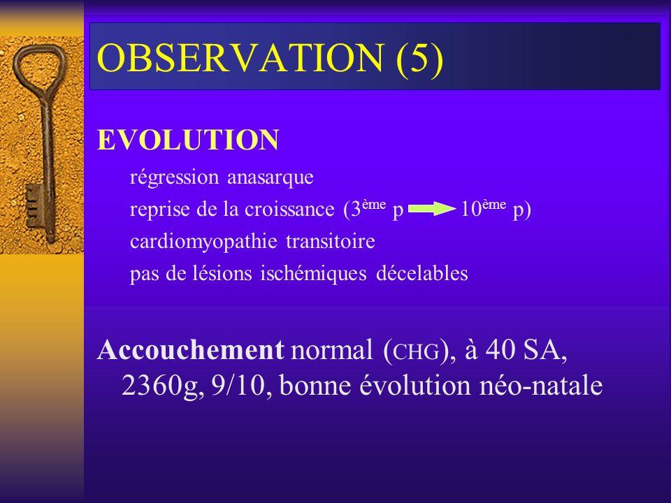 OBSERVATION (5) EVOLUTION