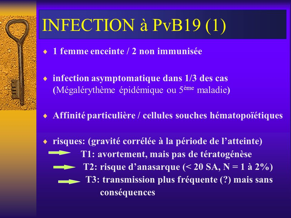 INFECTION à PvB19 (1) 1 femme enceinte / 2 non immunisée