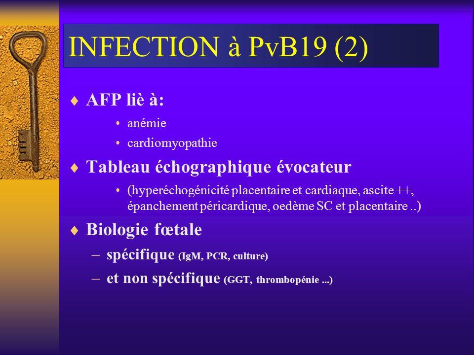 INFECTION à PvB19 (2) AFP liè à: Tableau échographique évocateur
