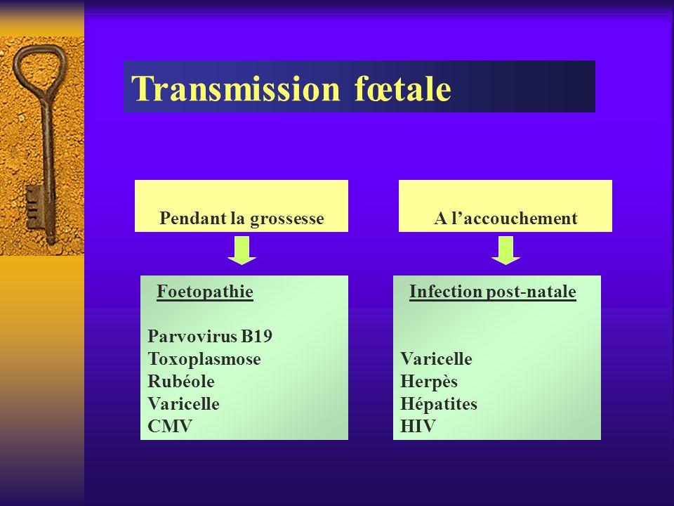 Transmission fœtale Pendant la grossesse A l'accouchement Foetopathie