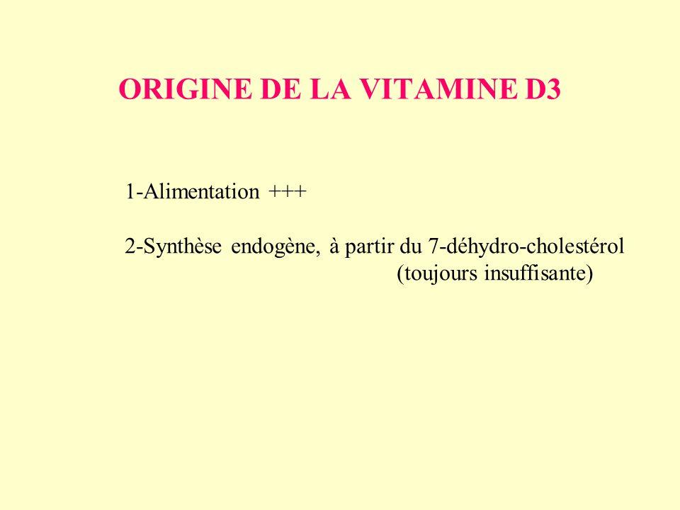 ORIGINE DE LA VITAMINE D3