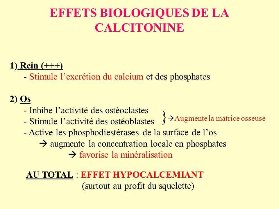 EFFETS BIOLOGIQUES DE LA CALCITONINE