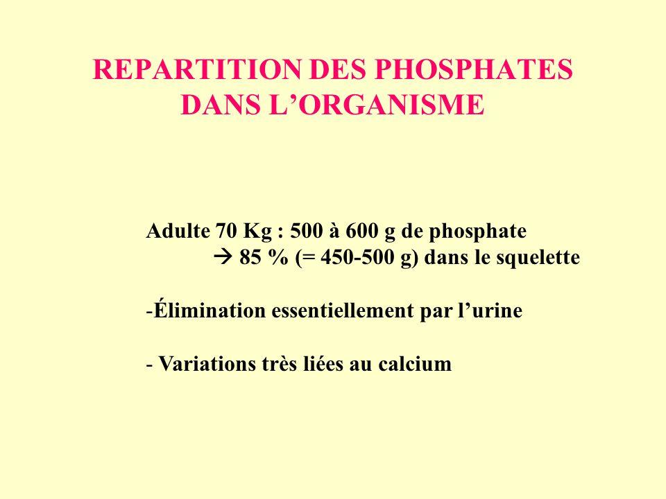 REPARTITION DES PHOSPHATES DANS L'ORGANISME