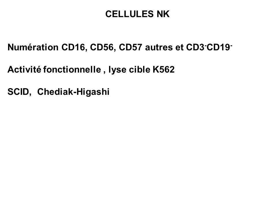 CELLULES NKNumération CD16, CD56, CD57 autres et CD3-CD19- Activité fonctionnelle , lyse cible K562.