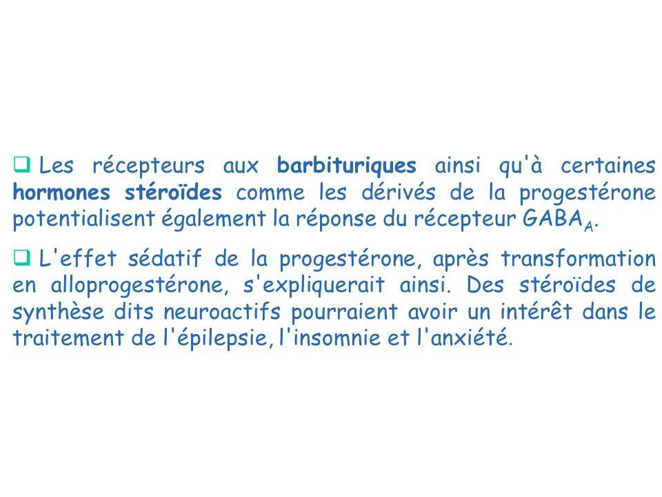 Les récepteurs aux barbituriques ainsi qu à certaines hormones stéroïdes comme les dérivés de la progestérone potentialisent également la réponse du récepteur GABAA.