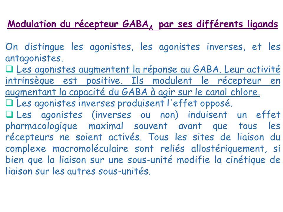 Modulation du récepteur GABAA par ses différents ligands