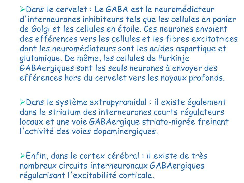 Dans le cervelet : Le GABA est le neuromédiateur d interneurones inhibiteurs tels que les cellules en panier de Golgi et les cellules en étoile. Ces neurones envoient des efférences vers les cellules et les fibres excitatrices dont les neuromédiateurs sont les acides aspartique et glutamique. De même, les cellules de Purkinje GABAergiques sont les seuls neurones à envoyer des efférences hors du cervelet vers les noyaux profonds.